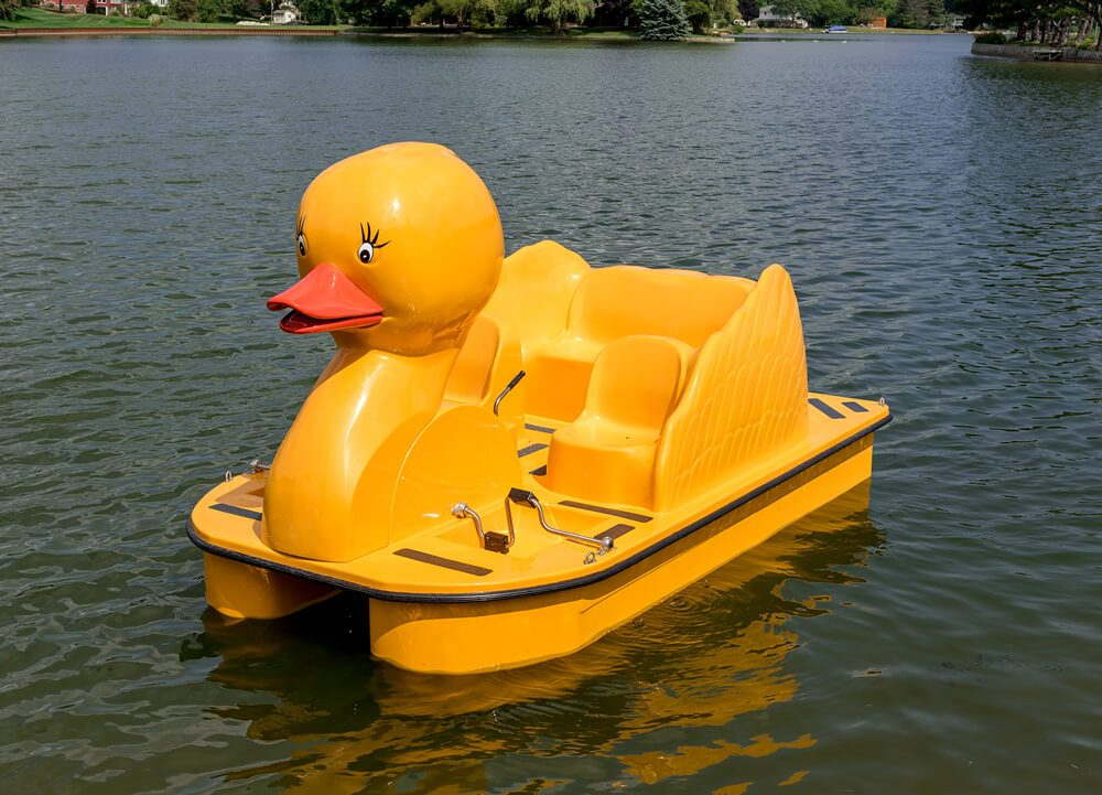 Paddle Wheeler Duck